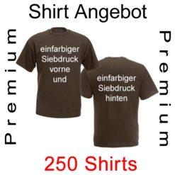 250 premium T-Shirts mit einfarbigem Siebdruck vorne und hinten von deiner Datei